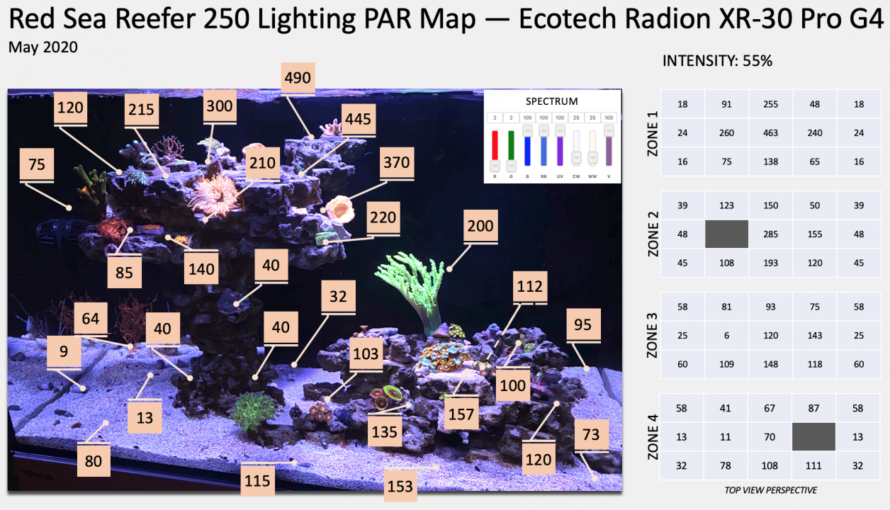 Squist RSR 250 Lighting PAR Map — Ecotech Radion XR-30 Pro G4 2020-05-23.png